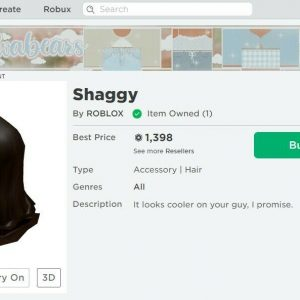2010 Roblox Account with Shaggy! (CHEAP!)