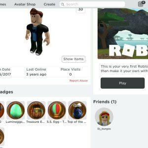 2017 Roblox account (CHEAP) Read desc.