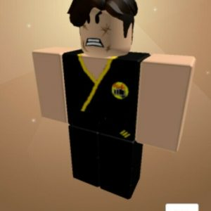 Roblox Account. This is one of my best roblox accounts it has everything!
